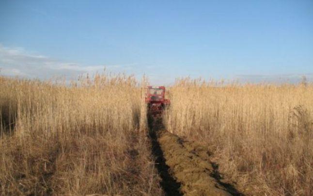 Veste buna de la UE pentru fermieri incepand cu 2014