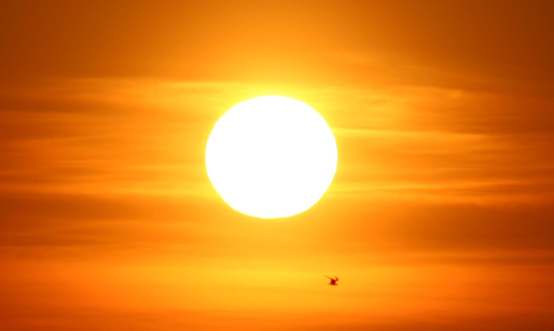 Prima perioadă cu adevărat călduroasă din 2020. Vedeți prognoza meteo pe 2 săptămâni la Satu Mare