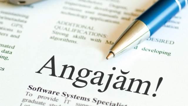 548 locuri de munca disponibile in Satu Mare oferite azi de ANOFM