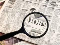 302 locuri de munca vacante in oferta de astazi a AJOFM Satu Mare