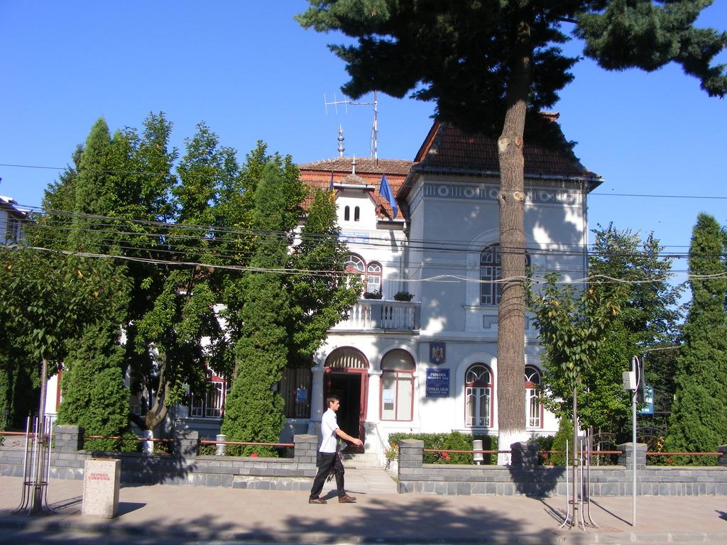 Primaria Negresti Oas are nevoie de un administrator public