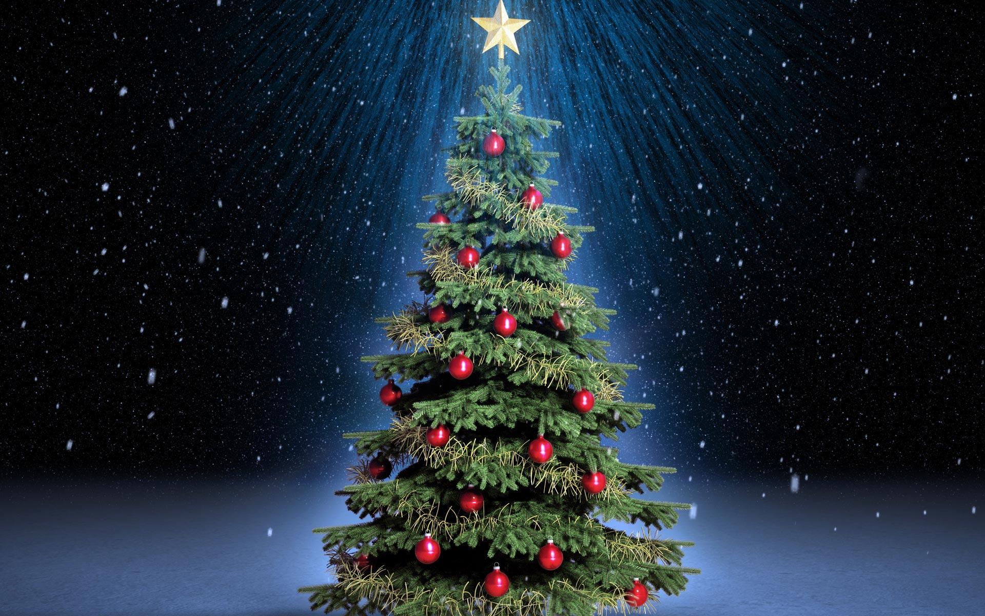 Istoria pomului de Crăciun în lume și în România