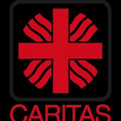 Acţiune umanitară a Organizaţiei  Caritas  a Diecezei  Satu Mare