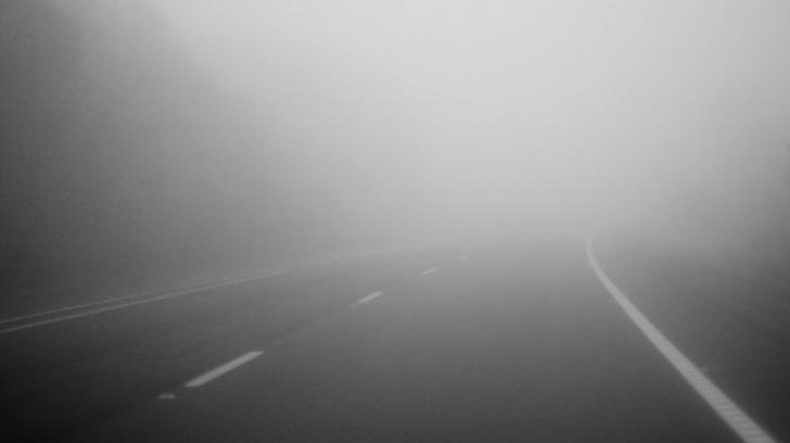 Cod galben de ceata la Satu Mare