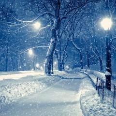 Acum vine ninsoarea! Vedeti cat vor dura fenomenele meteo la Satu Mare.Prognoza meteo pe 2 saptamani