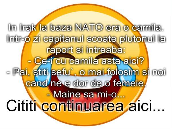 Bancul zilei :) Camila la baza NATO in Irak…