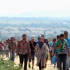 Decizie de ultima ora! Ce se va intampla cu centrul de refugiati din Tasnad