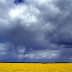 Vreme rece la Satu Mare. Vedeţi prognoza meteo pe 2 săptămâni