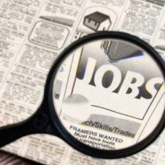 92 locuri de muncă vacante oferite de către Agenția Județeană pentru Ocuparea Forței de muncă Satu Mare