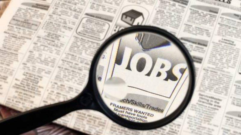 AJOFM Satu Mare: 882 locuri de muncă vacante în Spațiul Economic European