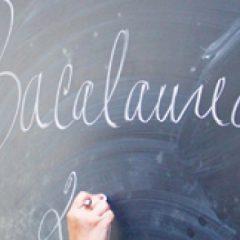 Vedeți ce rezultate s-au obținut la Examenul Național de Bacalaureat, în județul Satu Mare