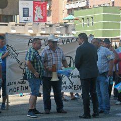 """De ce Primăria Satu Mare nu a acordat autorizație pentru organizarea mitingului de protest în legătură cu """"Autostrada Codrului"""""""