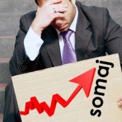 Vedeți care este rata şomajului înregistrat în evidenţele AJOFM Satu Mare în luna august 2020