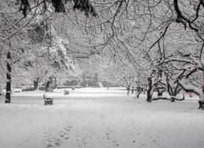 Avertizare! Primul val de ninsori la Satu Mare