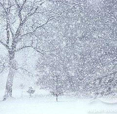 Ce surprize mai are vremea în luna ianuarie pentru sătmăreni. Vedeți prognoza meteo