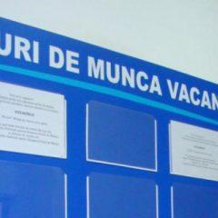 Angajatorii satmareni sunt obligati sa comunice locurile de munca vacante