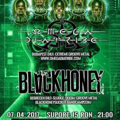 Concert Omega Diatribe si Blackhoney la Satu Mare