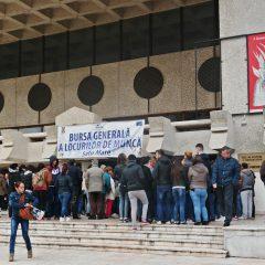 Bursa locurilor de munca pentru absolventi la Satu Mare