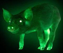 Un mistret radioactiv a fost descoperit in Romania. Autoritatile sunt in alerta
