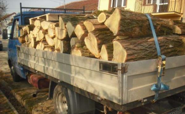 Transport ilegal de lemne sancţionat de jandarmi cu 1000 lei