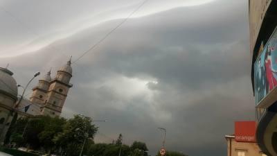 Cod galben de furtuni la Satu Mare