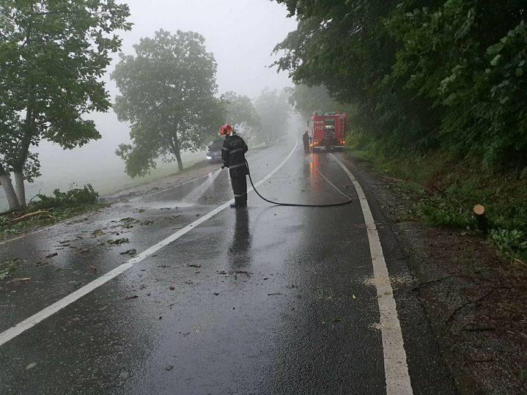 Copac cazut peste un autoturism la Huta Certeze