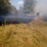 Incendiu de vegetație uscată la Micula