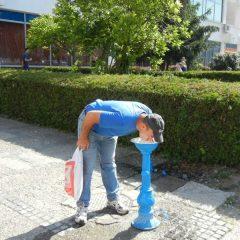 Primaria Satu Mare a luat masuri pentru combaterea efectelor caniculei