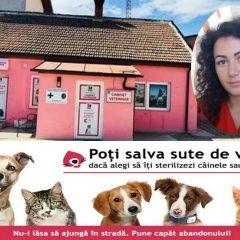 Dr.Andrada Sopoian: Avantajele sterilizarii animalelor de companie