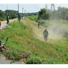 Intretinerea si amenajarea zonelor verzi din municipiul Satu Mare