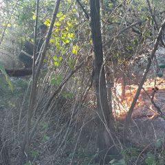 Incendiu de amploare pe o pășune din localitatea Prilog Vii
