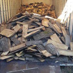 7 persoane bănuite de sustragerea de material lemnos, reținute de polițiști