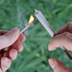 """Mesajul zilei din partea Poliției Satu Mare: Pericolul drogurilor numite """"etnobotanice"""" sau """"legale"""""""