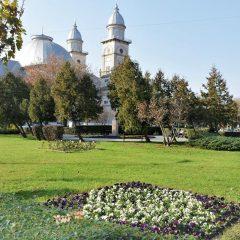 GALERIE FOTO! 3 parcuri modernizate în municipiul Satu Mare