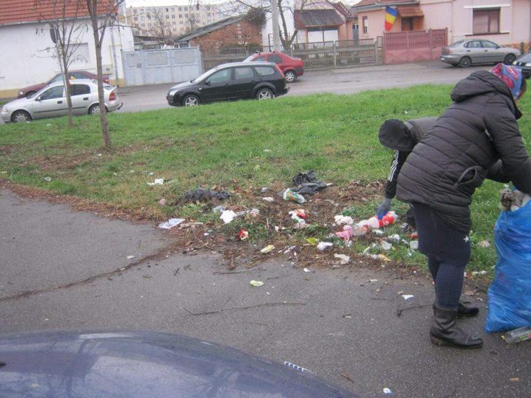 Asistații sociali au fost scoși la muncă în municipiul Satu Mare