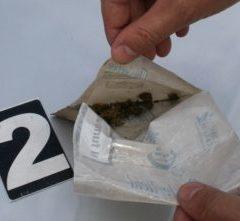Trei tineri din Tășnad au fost depistați de polițiști având asupra lor droguri de risc