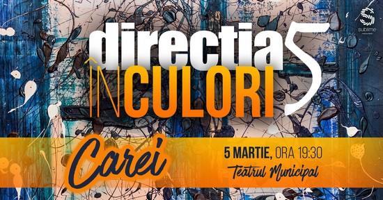 Concert Direcția 5 la Carei