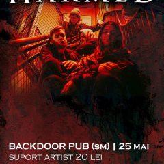 Concert metal cu una dintre cele mai sonore nume din Ungaria la Satu Mare