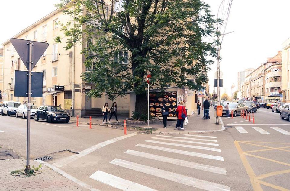 Primăria Municipiului Satu Mare a luat decizia de a nu tăia copacul aflat pe str. Lovinescu, colț cu str. I.C Brătianu