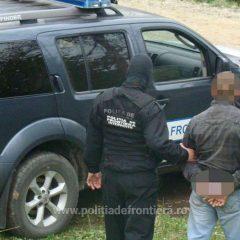 Bărbat căutat de autoritățile române pentru furt de arbori, oprit în vama Petea