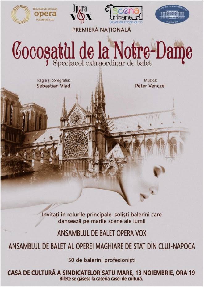 Cocosatul de la Notre Dame in Satu Mare