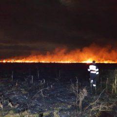 Incendiu vegetație uscată în localitatea Dacia