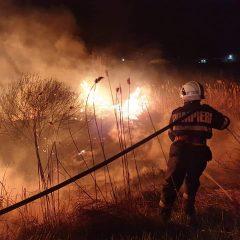 VIDEO Pompierii sătmăreni au intervenit ieri pentru stingerea a două incendii de vegetație uscată