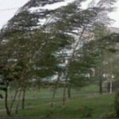 Avertizare meteo: intensificări ale vântului şi răcirea vremii