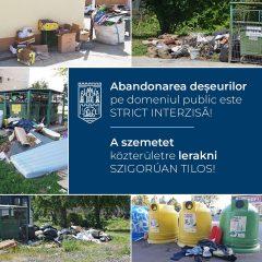 Primăria municipiului Satu Mare atrage atenția asupra abandonării deșeurilor pe domeniul public