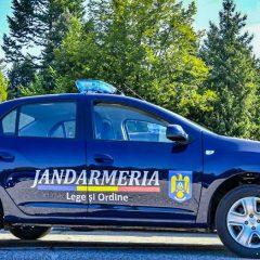 Puteți să vă angajați la Jandarmeria Satu Mare fără concurs! Vedeți care sunt condițiile