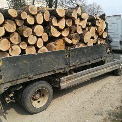 Un bărbat din Tășnad a fost prins de polițiști în timp de transporta lemne, fără aviz de însoțire