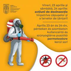 Primăria Satu Mare va efectua acțiuni de dezinsecție împotriva căpușelor și a larvelor de țânțari